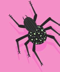 bug_opener