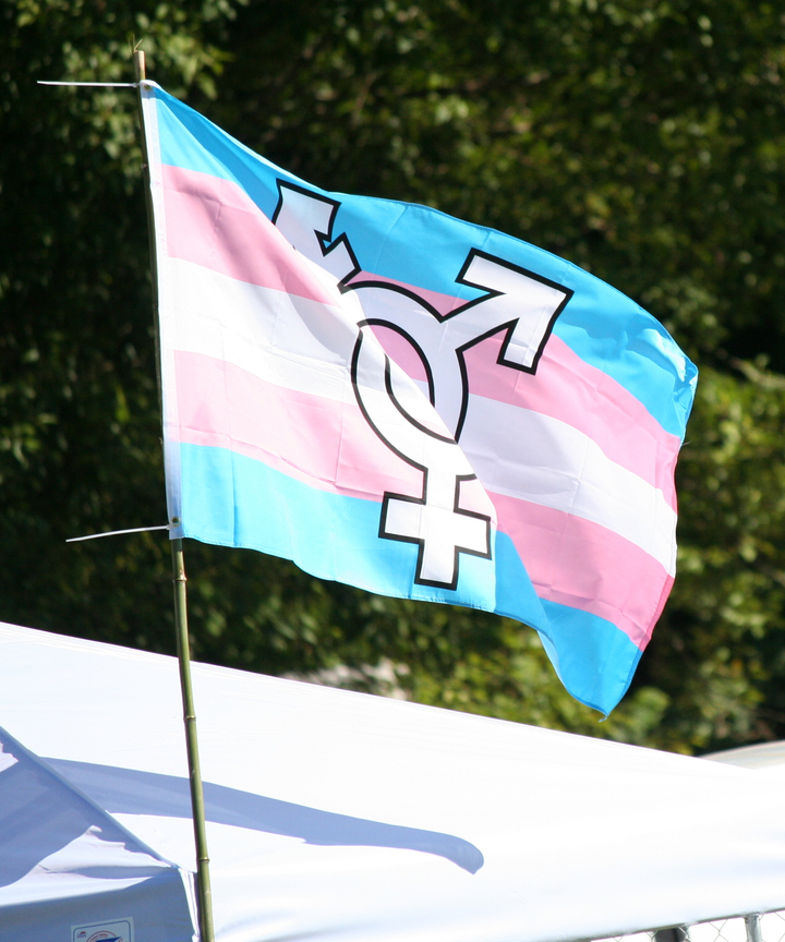 Today is Transgender Day of Visibility, a holiday devoted to celebrating the collective accomplishments of transgender and gender non-conforming people ...