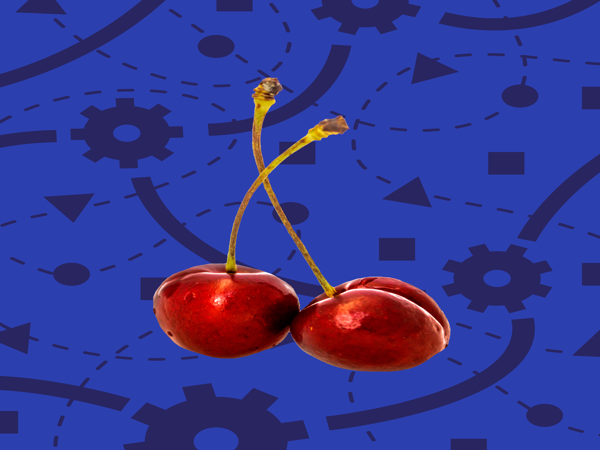 Gadget Or Gimmick: Cherry Pitters
