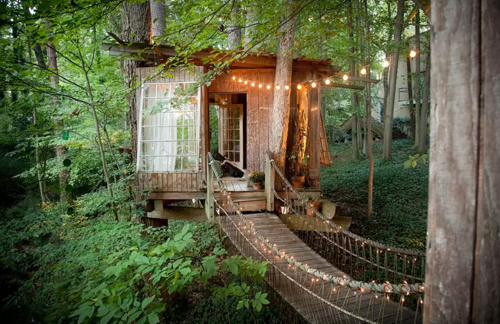 Insane Tree Houses airbnb rentals - houses apartments crazy homes to rent