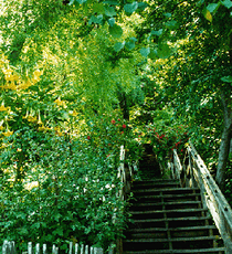 gardens san francisco