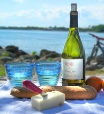miami-picnic-280