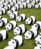 Paper Pandas Have Taken Over Hong Kong