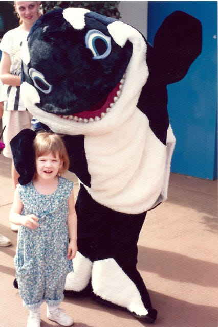 seaworld killer whales controversy essay