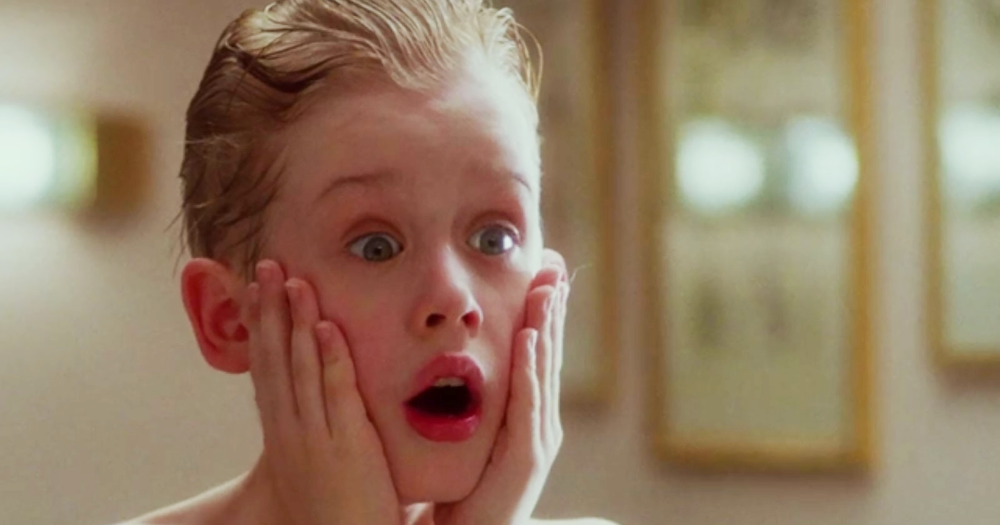 Home Alone  Box Office