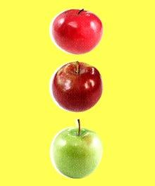 Apple_Infographic