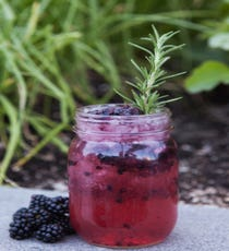 Avant Gardener, The Ritz-Carlton  You've heard of farm to table, but how about garden to glass? The Ritz-Carlton uses berries from its own rooftop garden for the cocktail menu at its WP24 restaurant. This one's made with bourbon, simple syrup, and fresh lemon, basil, and blackberries. Yum. WP24 at The Ritz-Carlton Los Angeles, 900 West Olympic Boulevard; 213-743-8800.