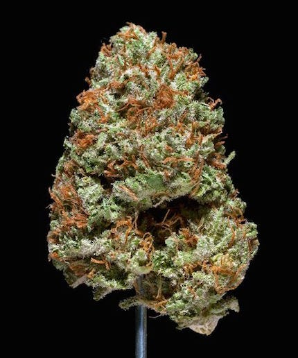 Difference Between Indica And Sativa Marijuana Strains