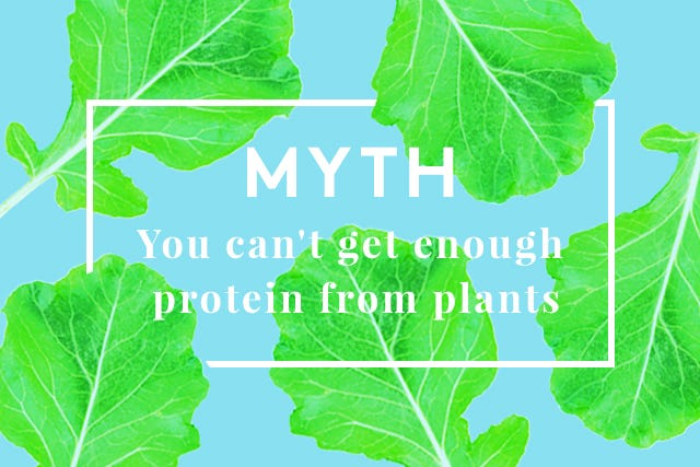 Vegetarian_Myths01