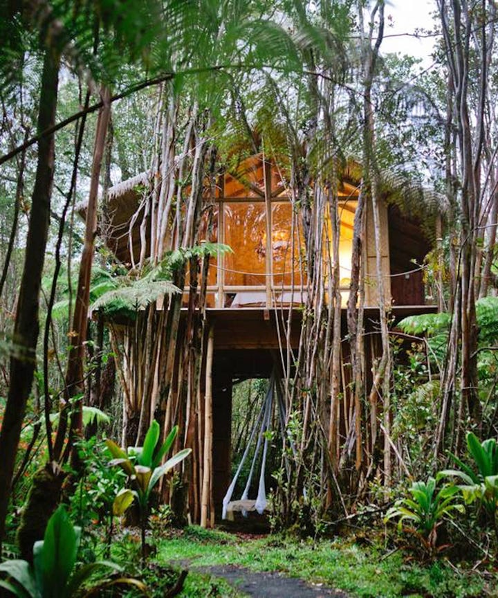 Best Treehouse Rentals On Airbnb For Fall Getaways 2018
