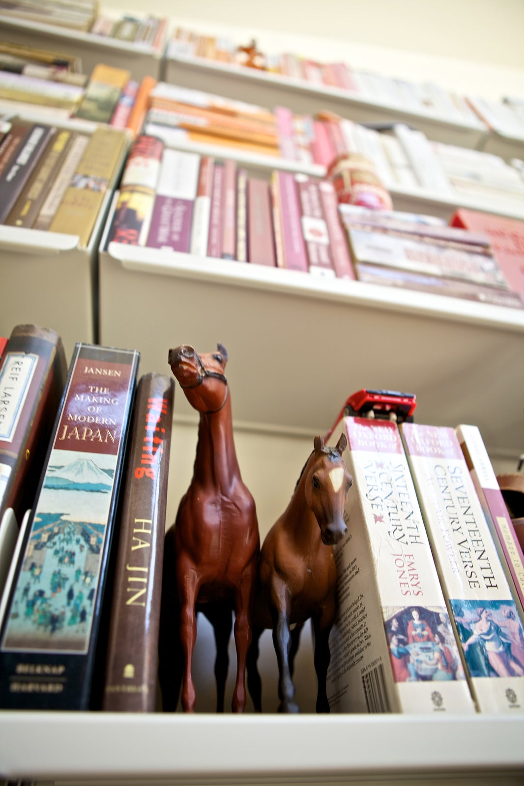 Beautiful Bookcase Pictures Pretty Bookshelves