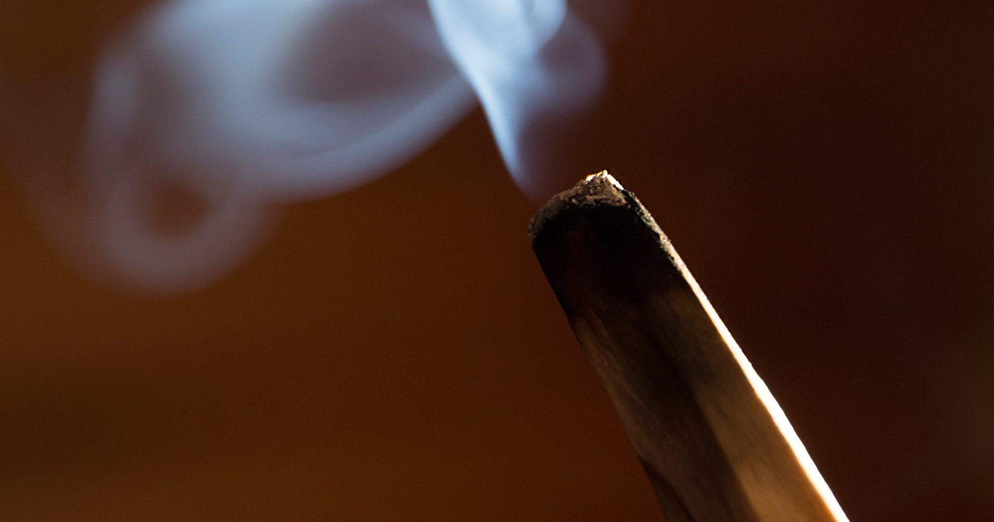 What Actually Is Palo Santo & When Should You Use It?