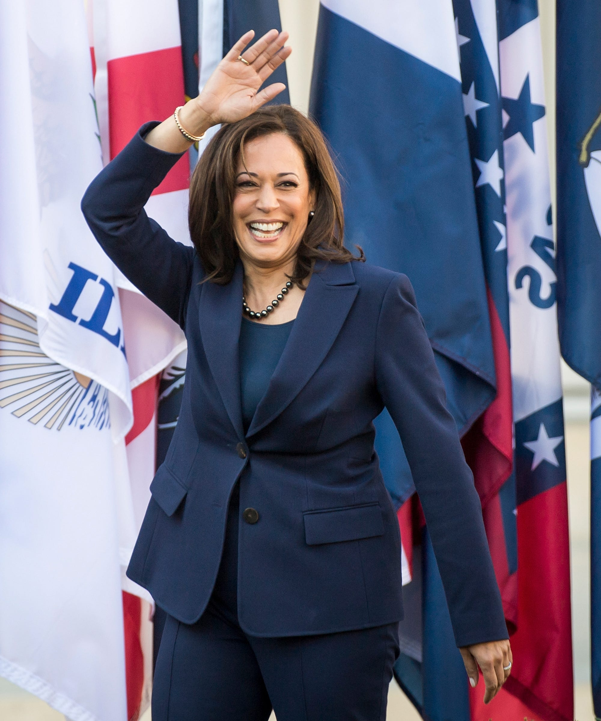 Who Is Running For President In 2020?