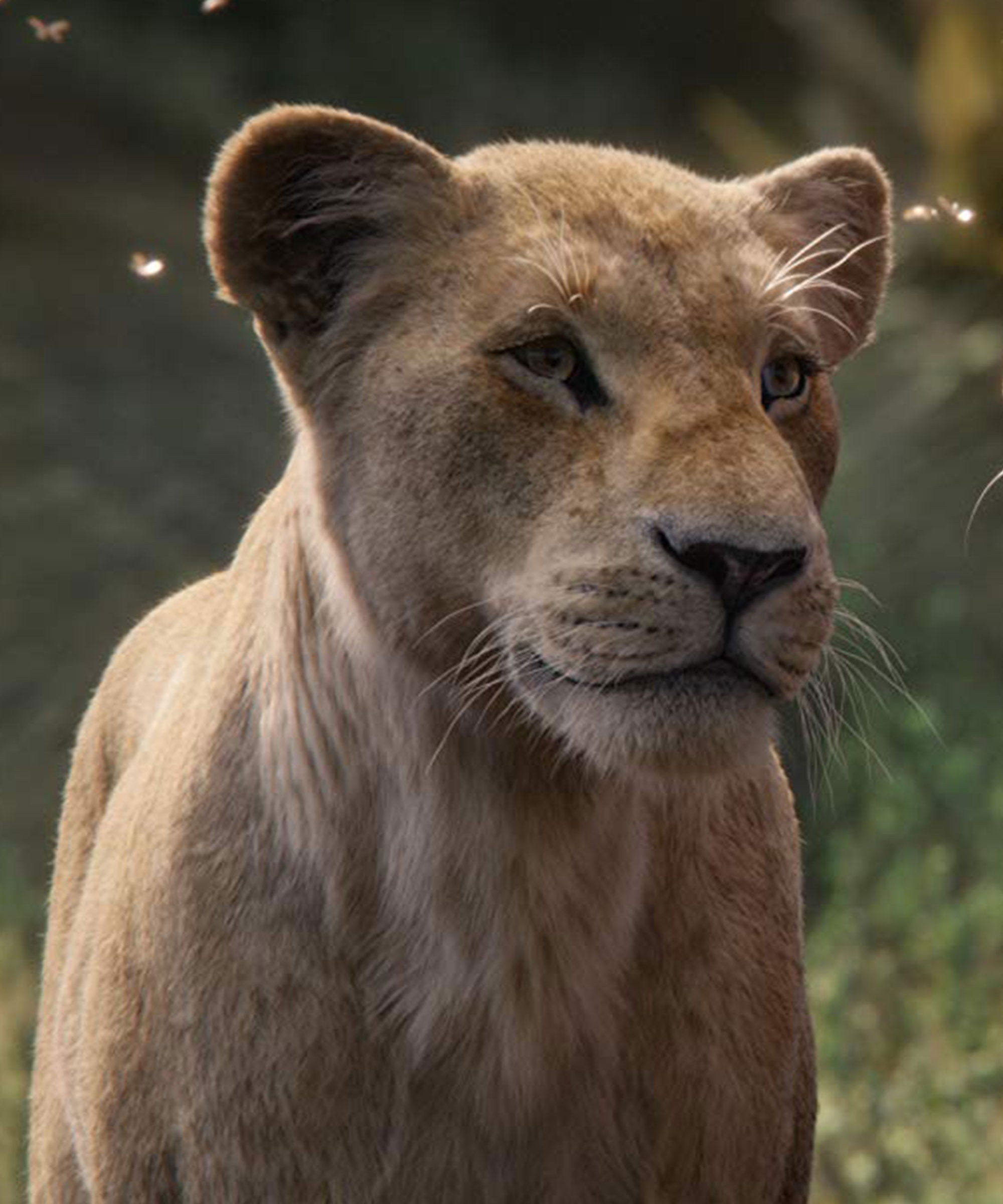 The New Lion King Gives Its Female Characters Actual Things To Do