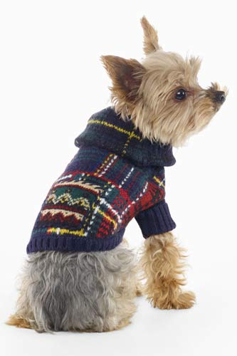 Animal Presents Cute Leashes Sweaters