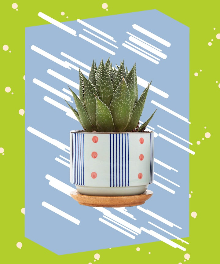 Cheap Amazon Home Decor Products - Best Decorations