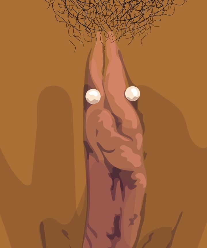 Old clitoris hood, sexies pussies hair cut