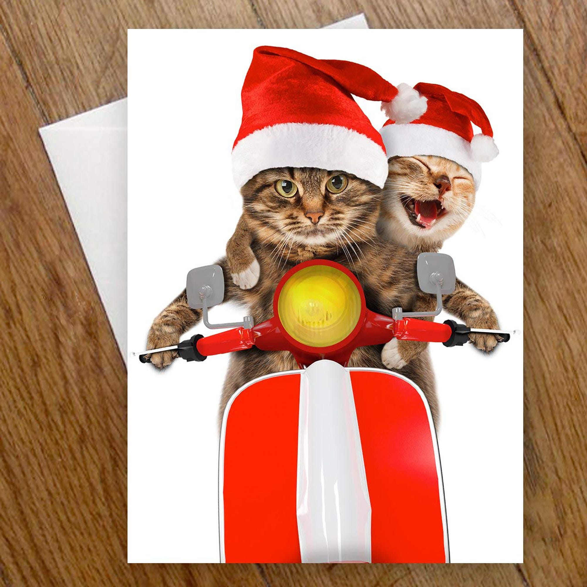 Unique Holiday & Christmas Cards 2018 Seasons Greetings