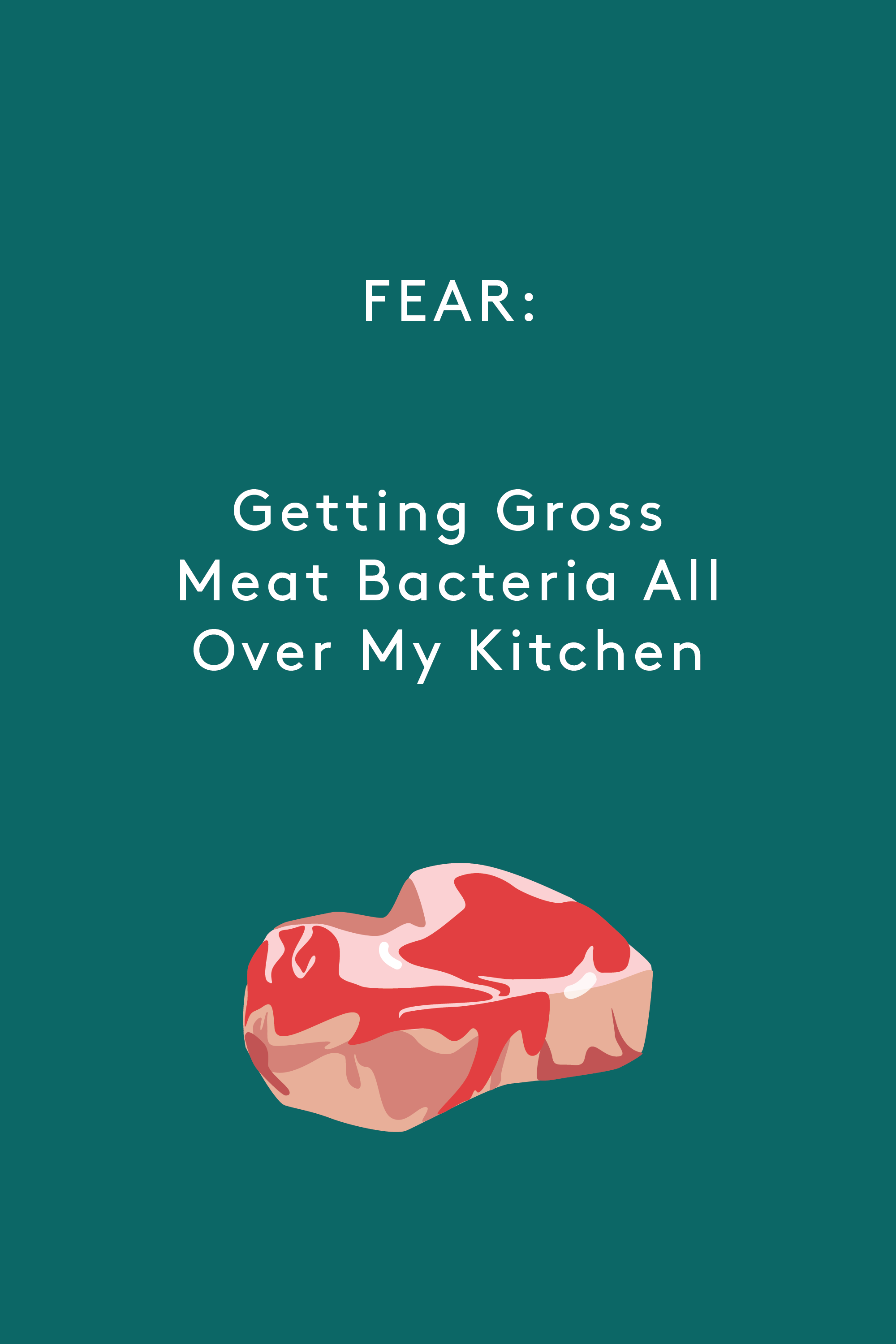 Fear Of Cooking Meat - How To Cook Meat Safely