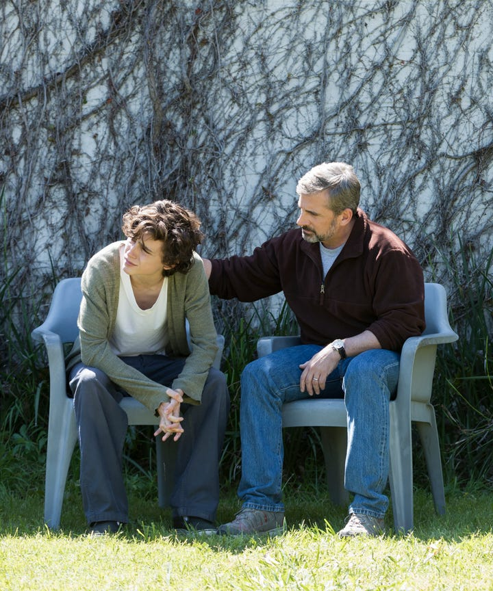 Image result for beautiful boy movie