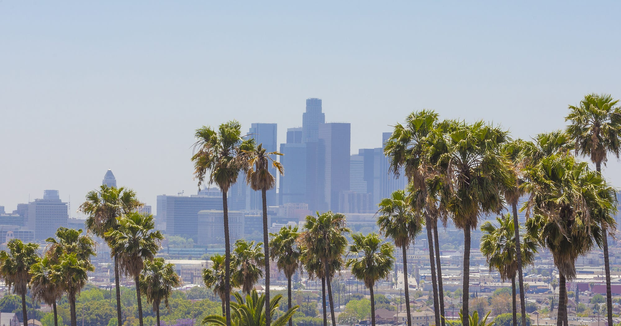 Where To Hang Out In L.A. — Based On Your Personality