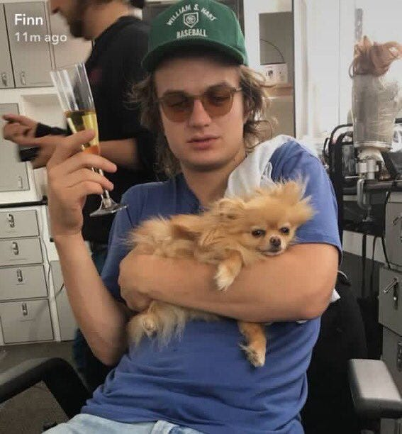 Joe Keery Dog Meme Photo Snapchat