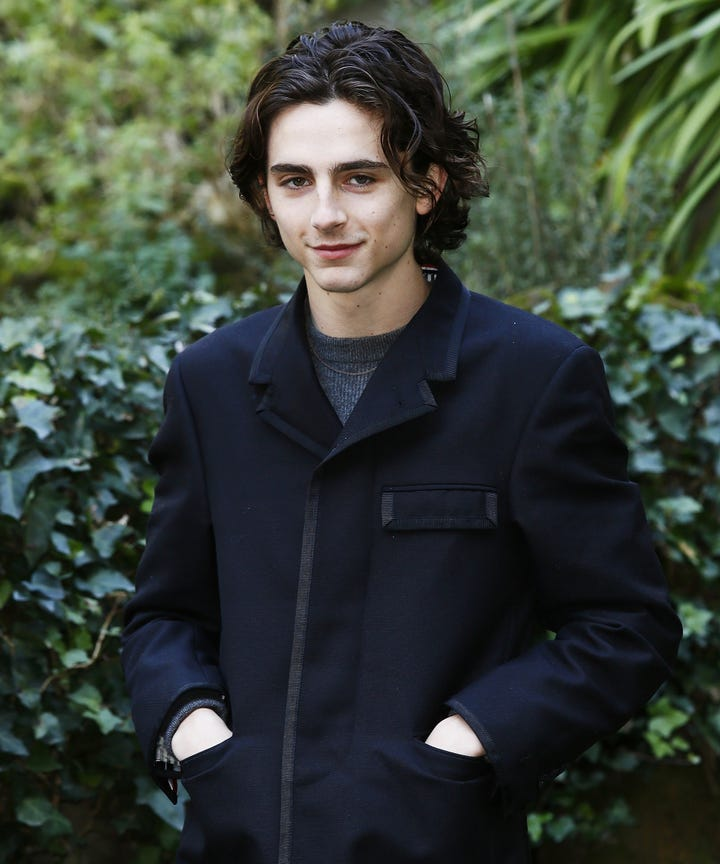 Image result for chalamet
