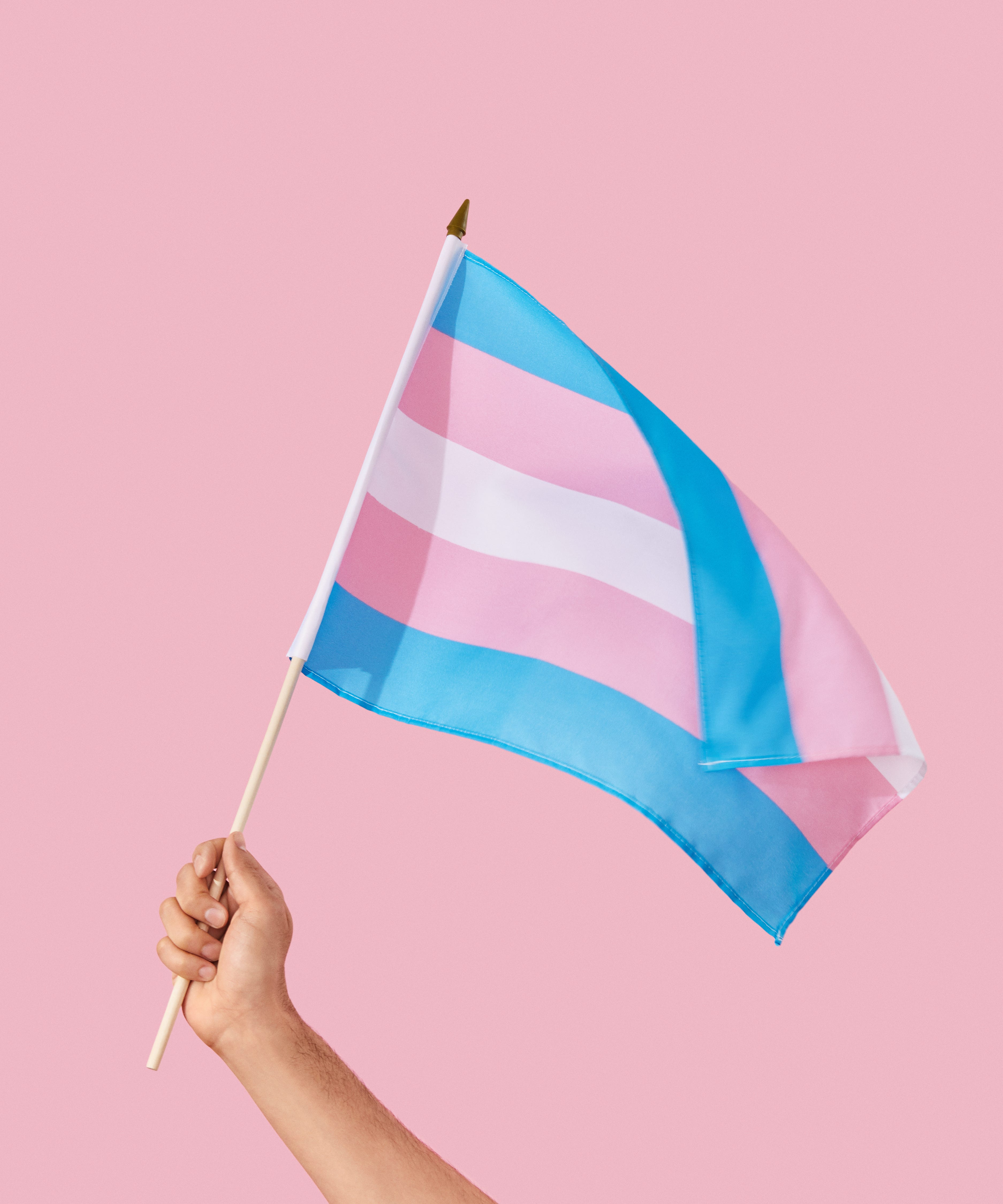 Transgender Flag Colors Meaning For Trans History