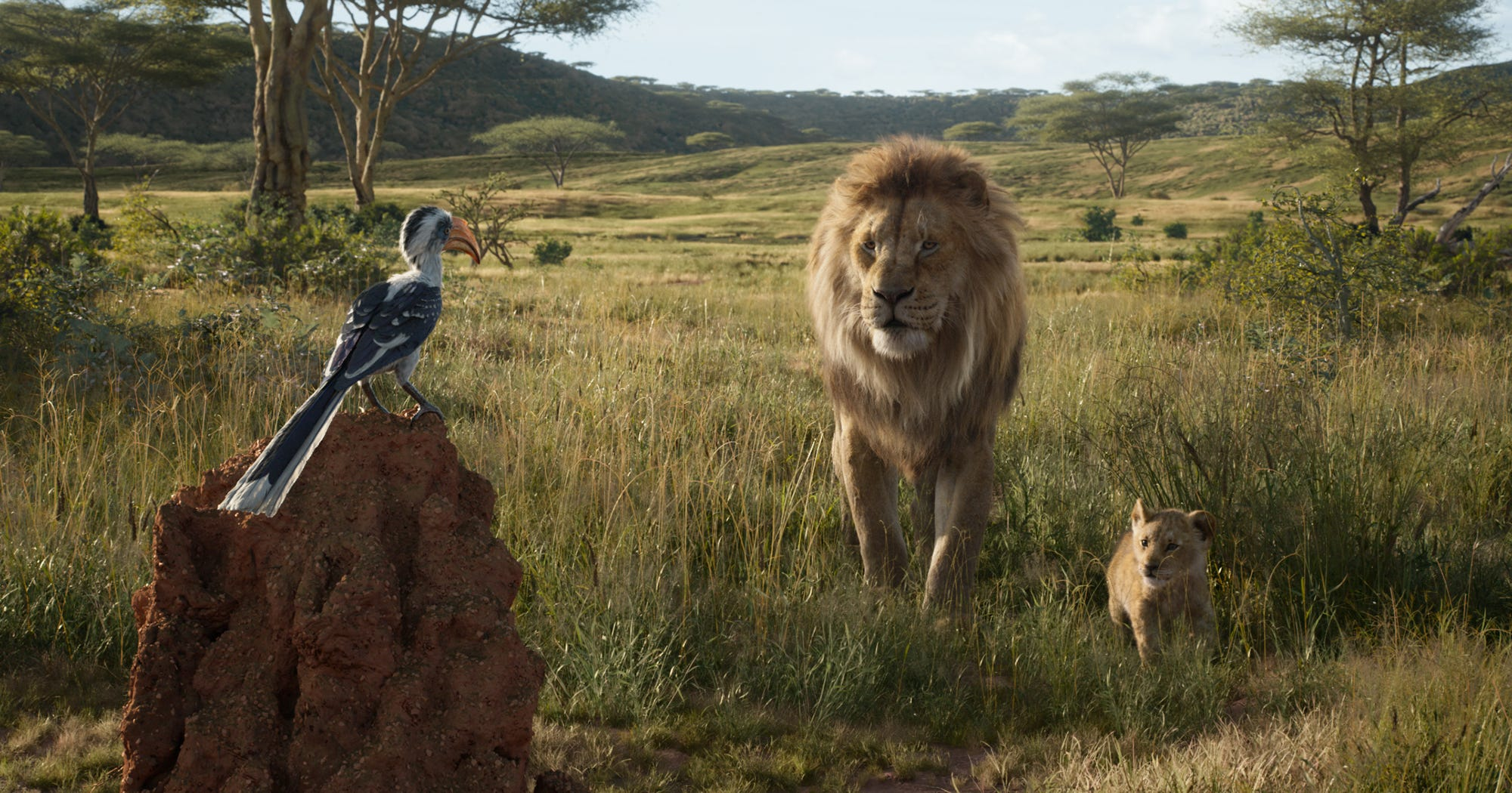 New Lion King Cast From Chance The Rapper To Beyonce