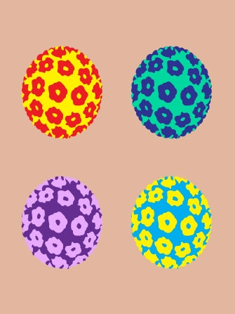 papiloma virus ansteckend)