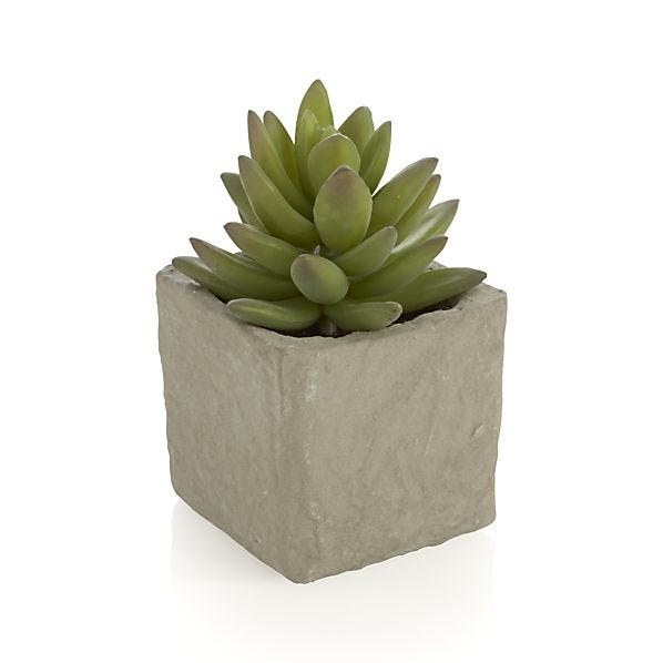 Geodesic Concrete Planter: What Christmas Presents To Buy