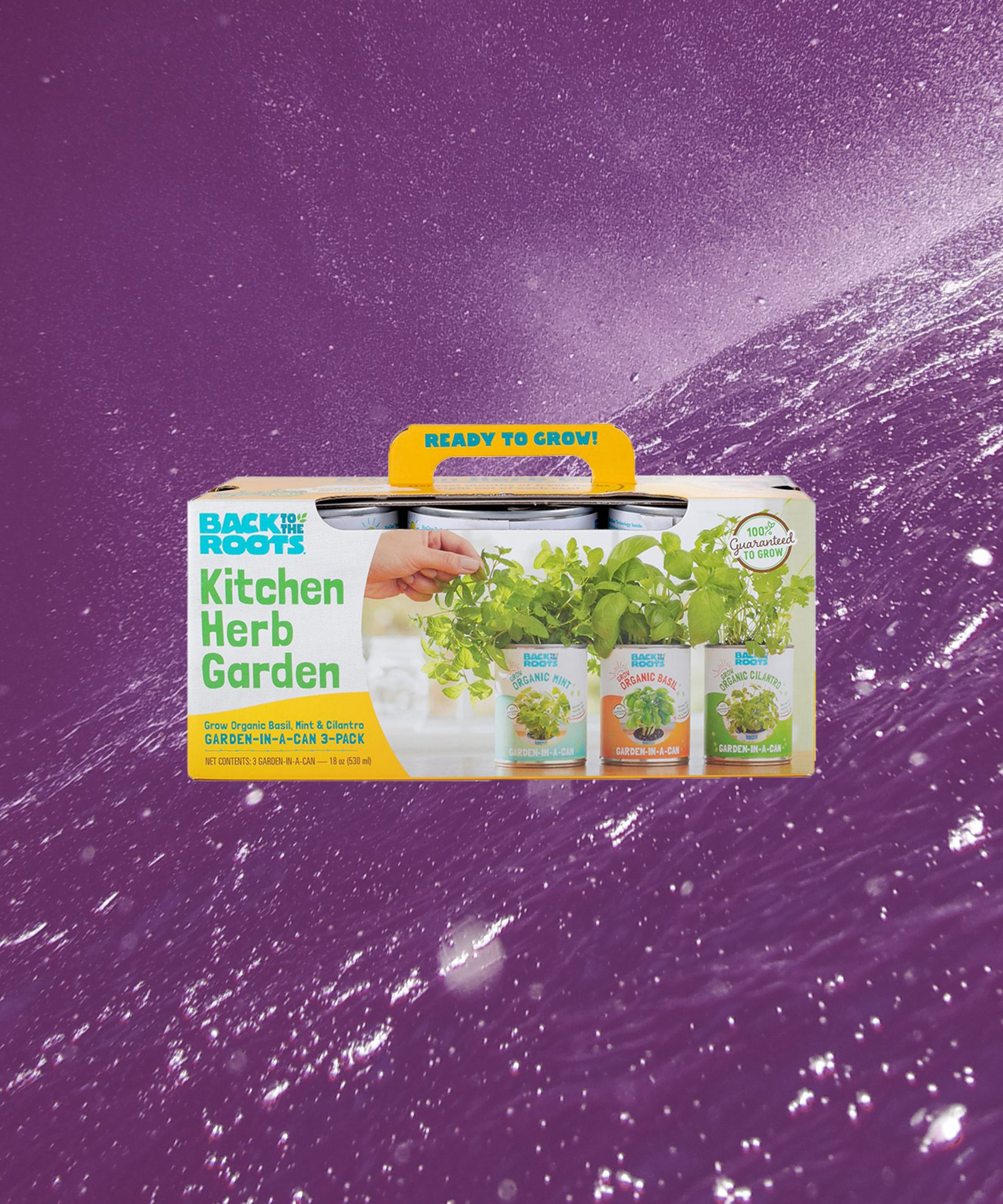 Indoor Herb Garden Kits To Grow At Home In Apartments