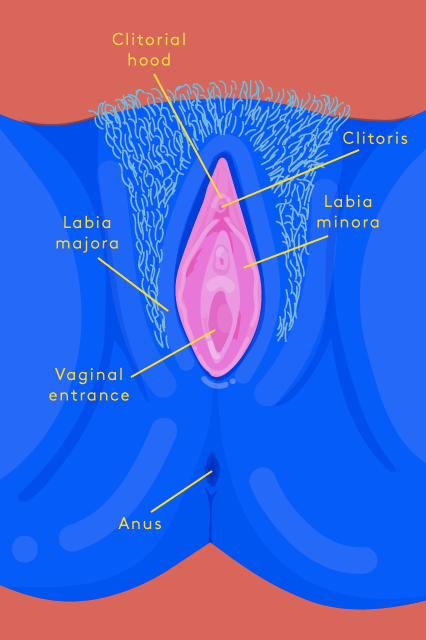 Masturbation Challenge