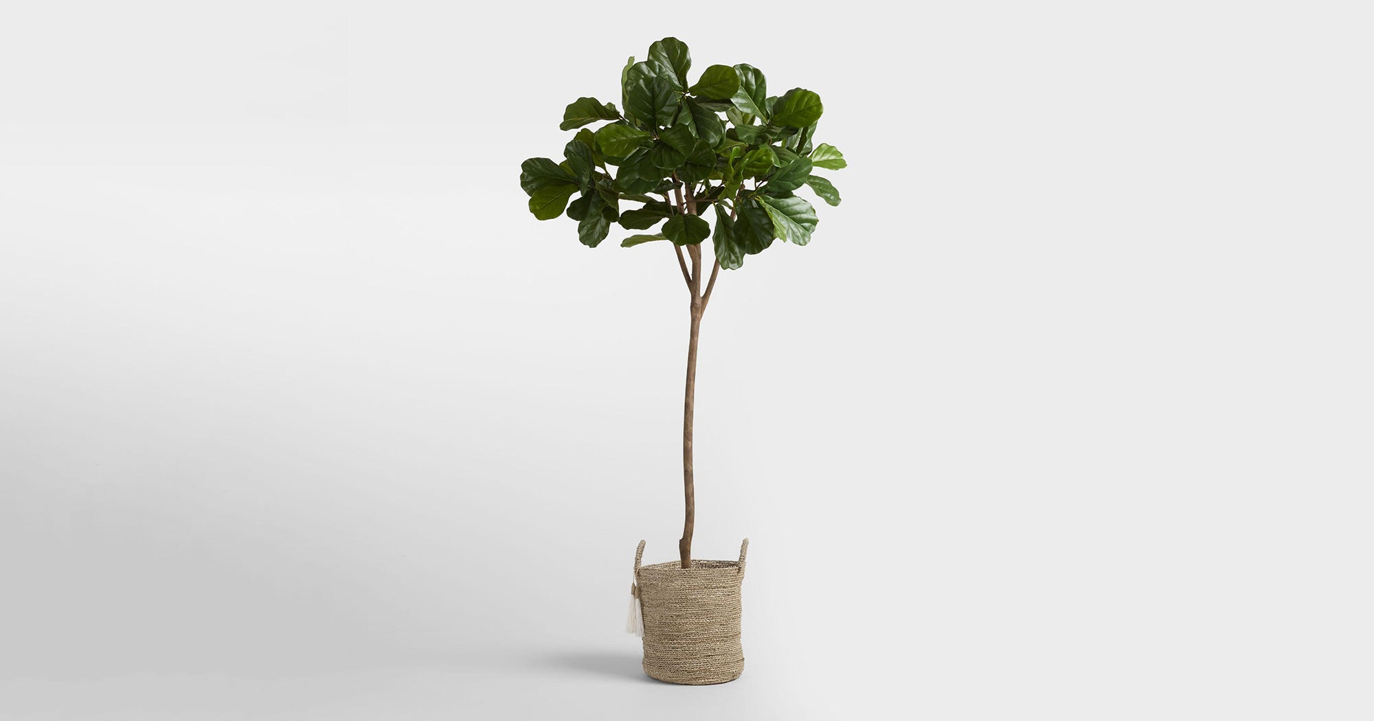 Awe Inspiring Why Fake Plants Flowers Are Coming Back To Home Decor Home Remodeling Inspirations Basidirectenergyitoicom
