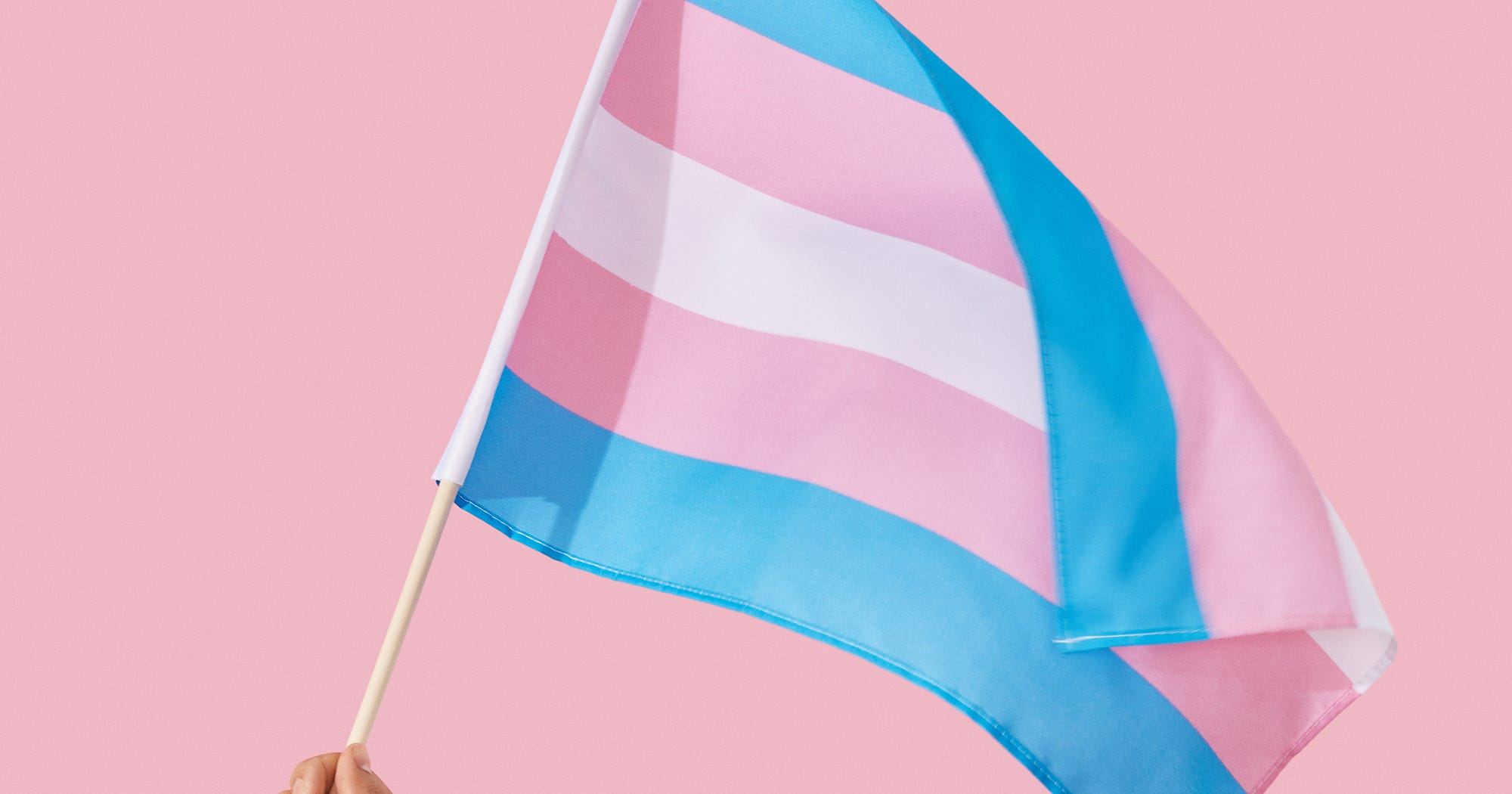 gender and the importance of the It's important to understand both gender and sexual orientation, but how we come to understand these parts of ourselves – and the choices we make to disclose and express them – are distinct paths.