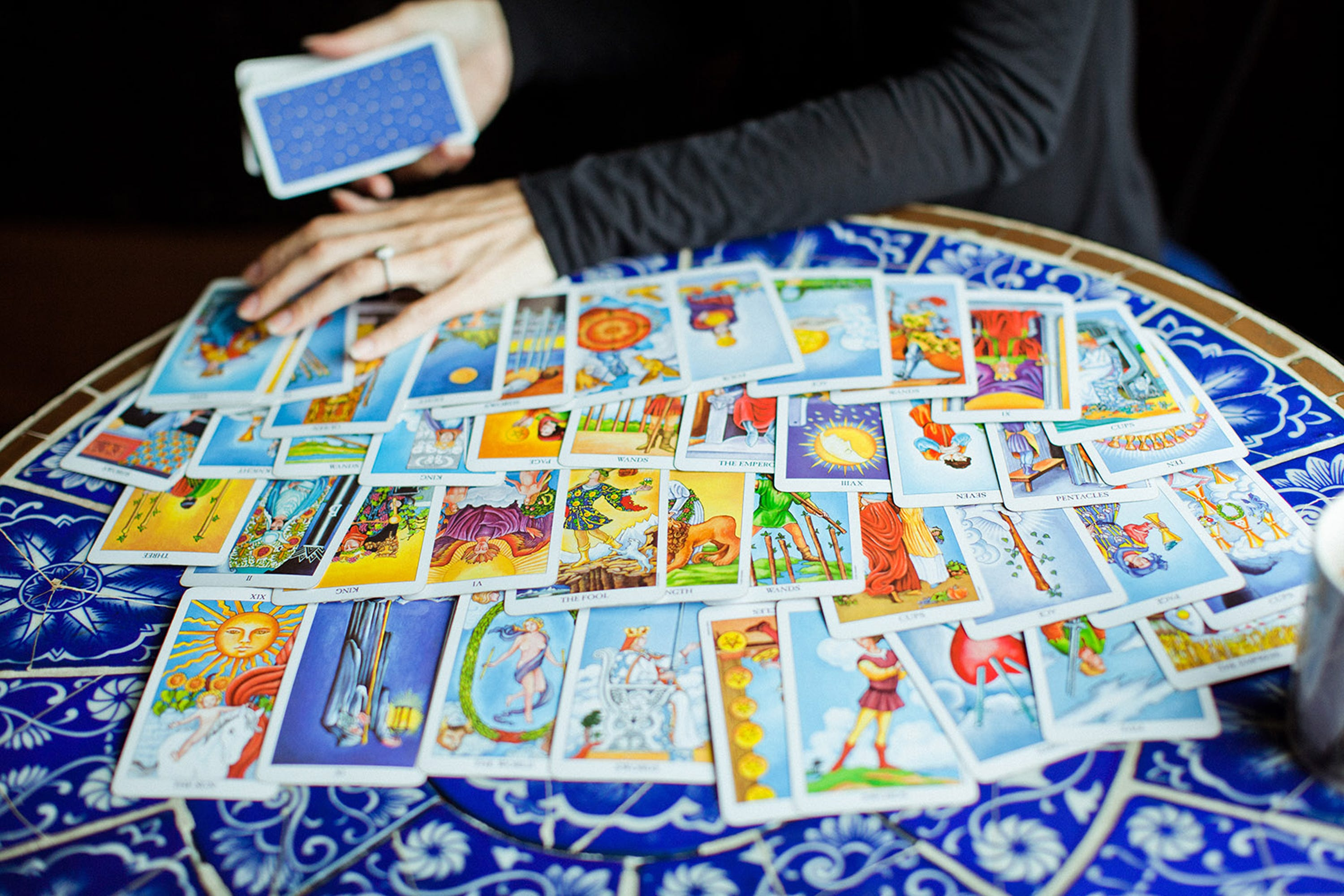 Tarot Card Reading Pet Psychic Experience True Story I Got A Tarot Reading For My Cat, & Here's What I Learned - 웹